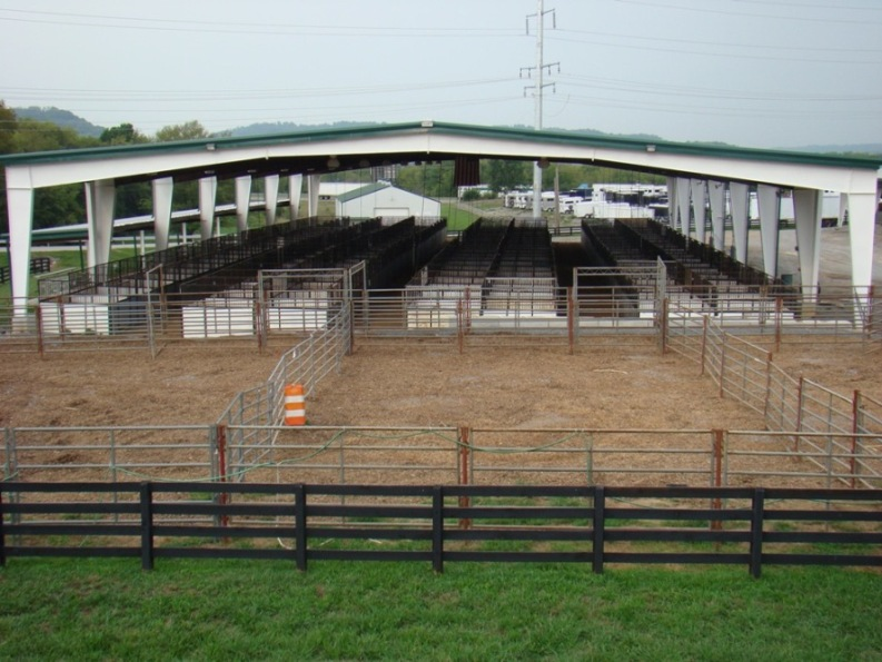 Manier Arena setup with 133 10' x 10' stalls